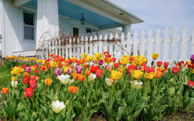 Preparing Your House for a Spring Sale
