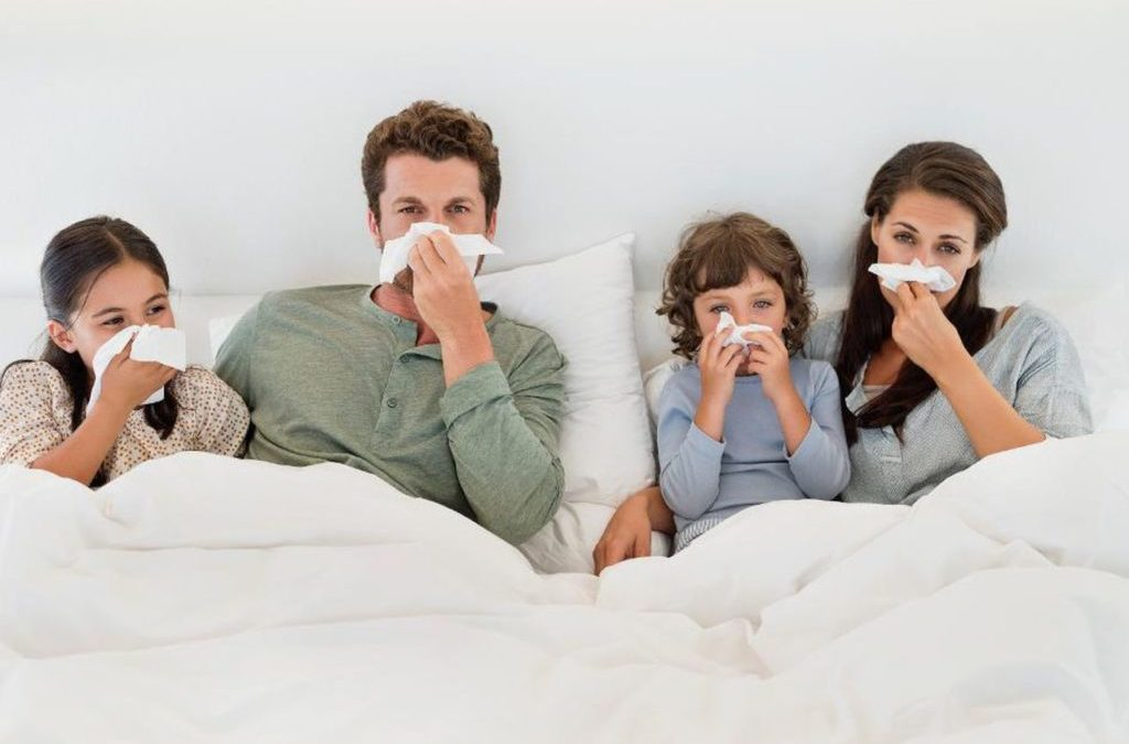 Breaking Down 3 Primary Methods Used to Fight Germs In Your Home