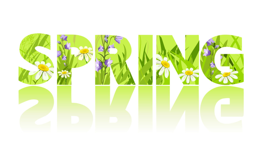 Spring Plumbing & HVAC Tips