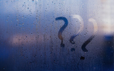 3 Ways Dehumidifiers Help With Humidity & Dampness